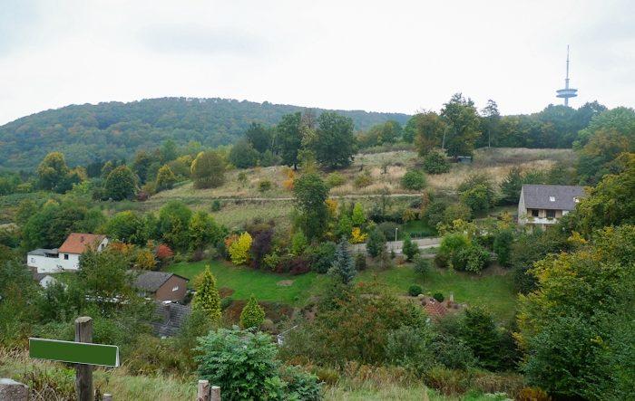 Grundstücke – insgesamt 10.004 m² – incl. 2 Baugrundstücke – Südhanglage in Porta Westfalica