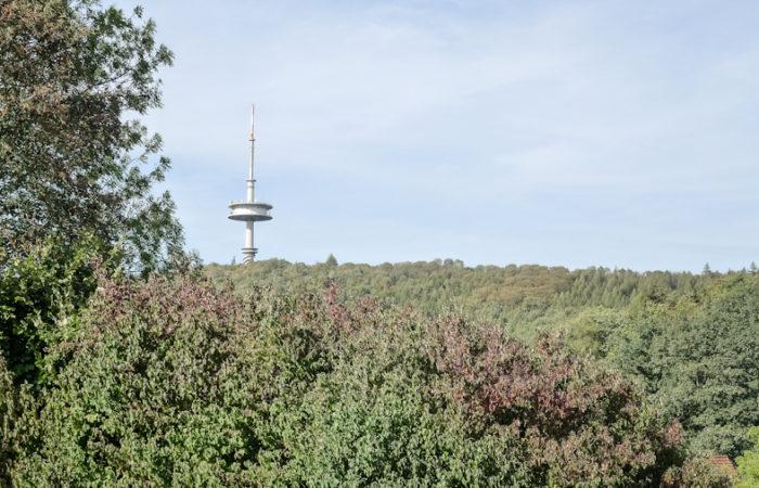 Baugrundstück mit Abrisshaus am Rande der Hausberger Schweiz